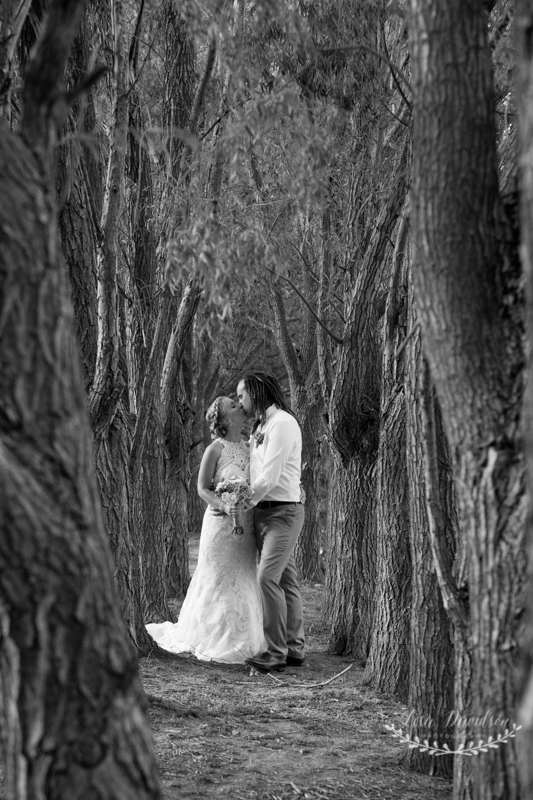 central-otago-wedding-74